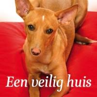 Belinda Meuldijk praat over <em>Een veilig huis</em>